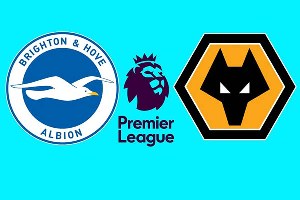 Nhận định Brighton vs Wolves, 21h00 27/10 : Vòng 10 Premier League
