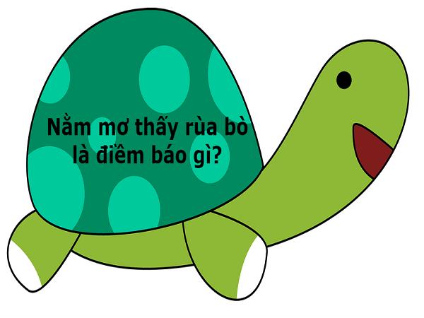Mơ thấy rùa là điềm báo gì, đánh con gì chuẩn