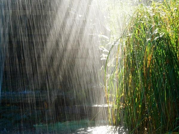 Mơ thấy trời mưa đánh lô đề con gì? điềm báo lành hay dữ?