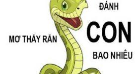Trong mơ thấy rắn đánh lô đề con gì?