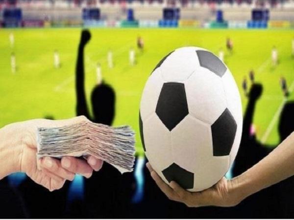 Ảnh hưởng của bán độ tới bóng đá là gì?